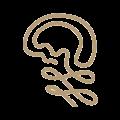 Logo quadrado